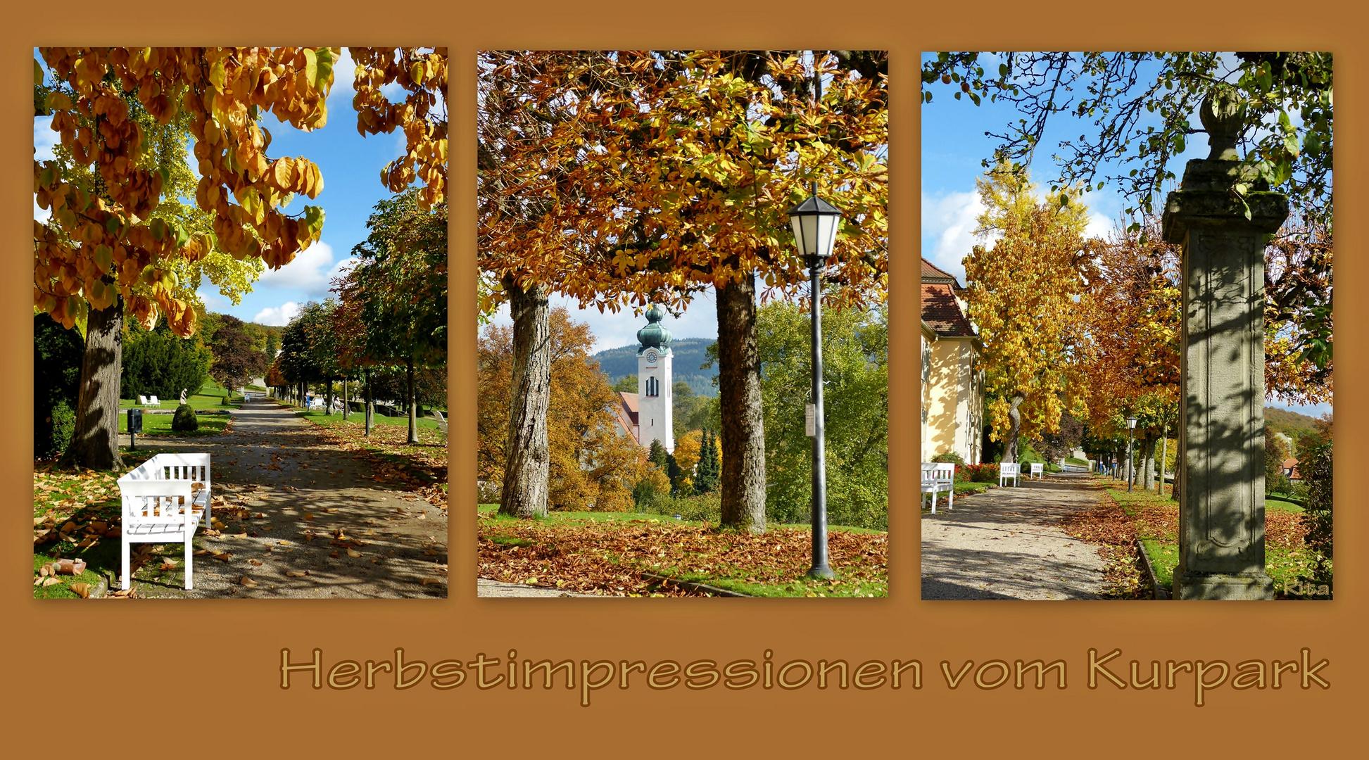 Herbst im Kurpark (2)...