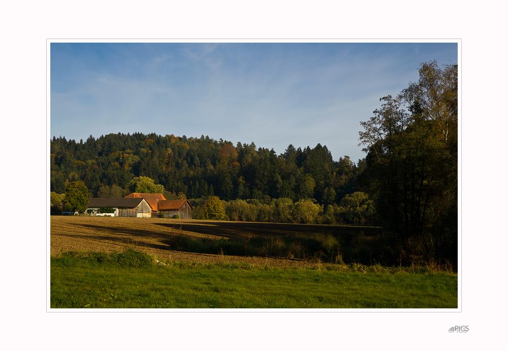 Herbst im Land