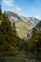 Herbst im Nationalpark Gesäuse