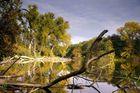 Herbst im Naturpark Barnim II