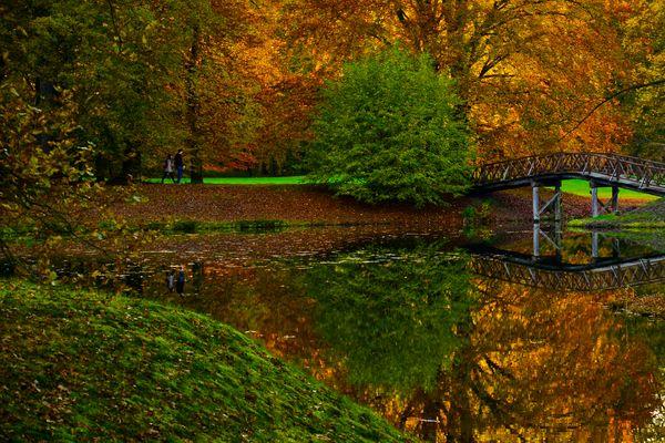 Herbst im November