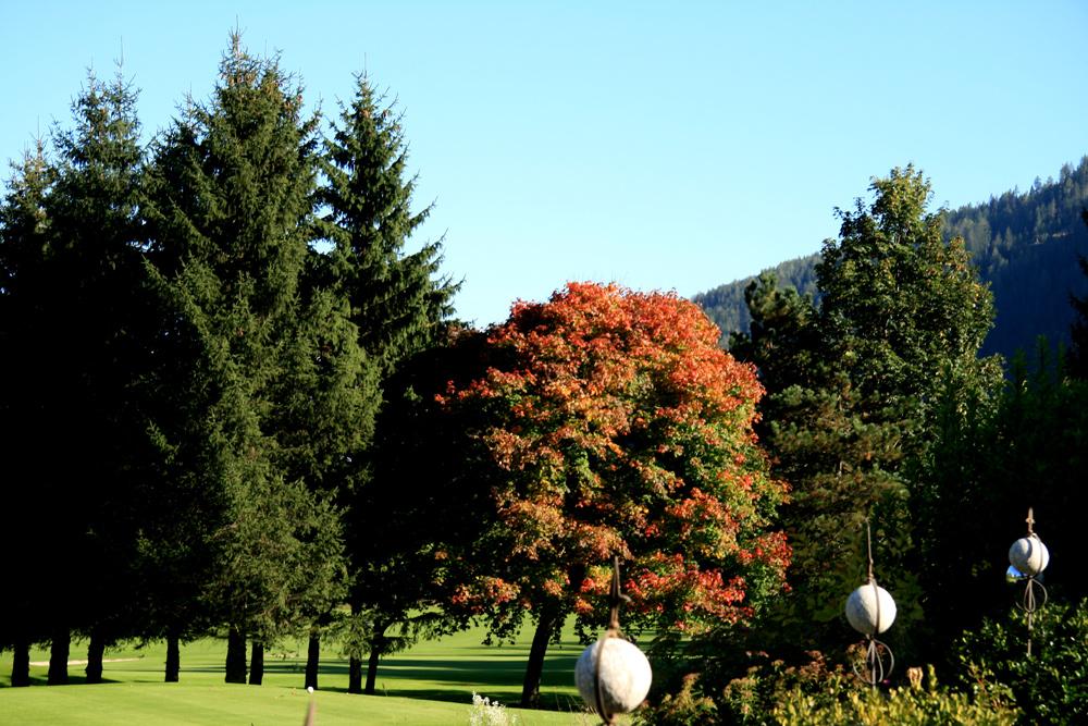 Herbst im obersten Gurktal