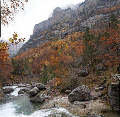 Herbst im Ordesa Tal