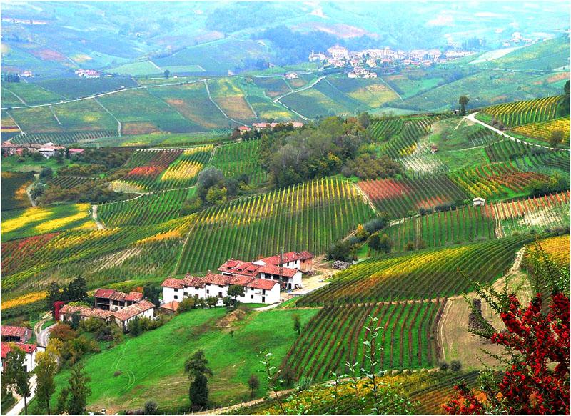 Herbst im Piemonte
