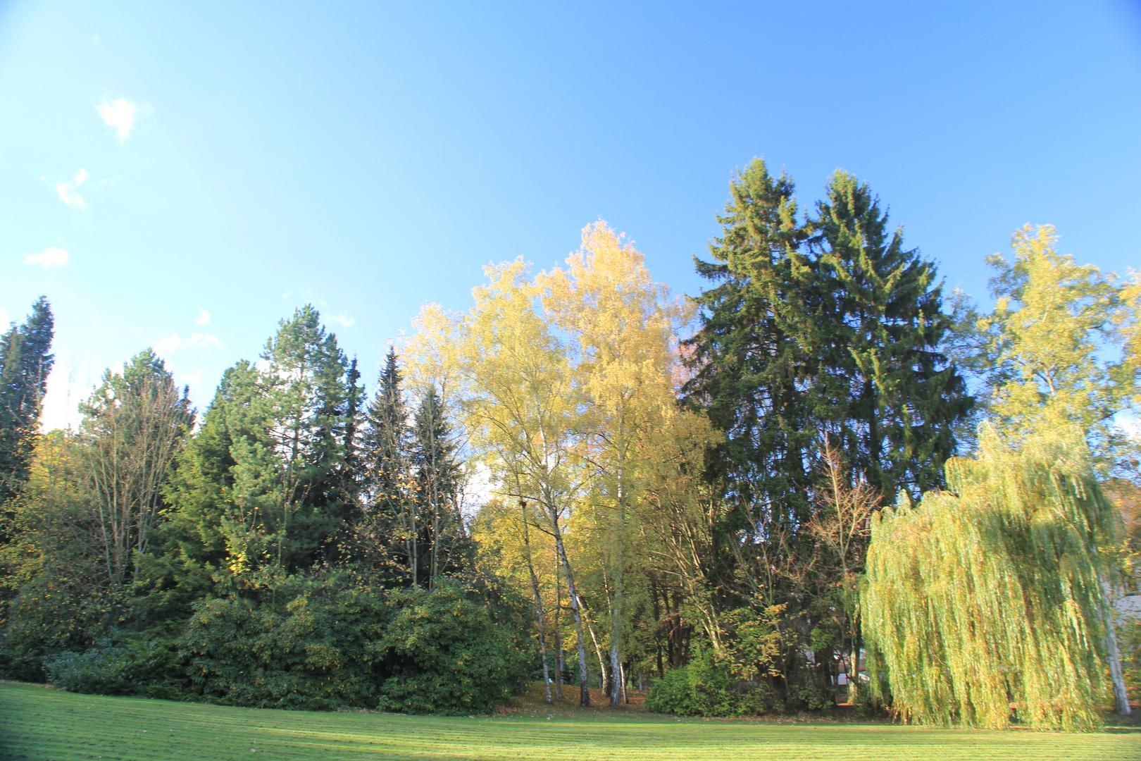 Herbst im Rehbergpark Herborn