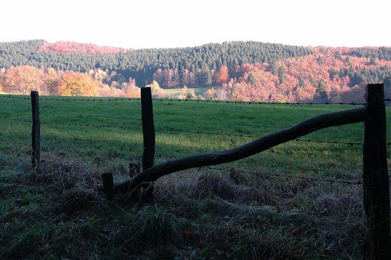 Herbst im Sauerland ...