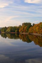 Herbst im See