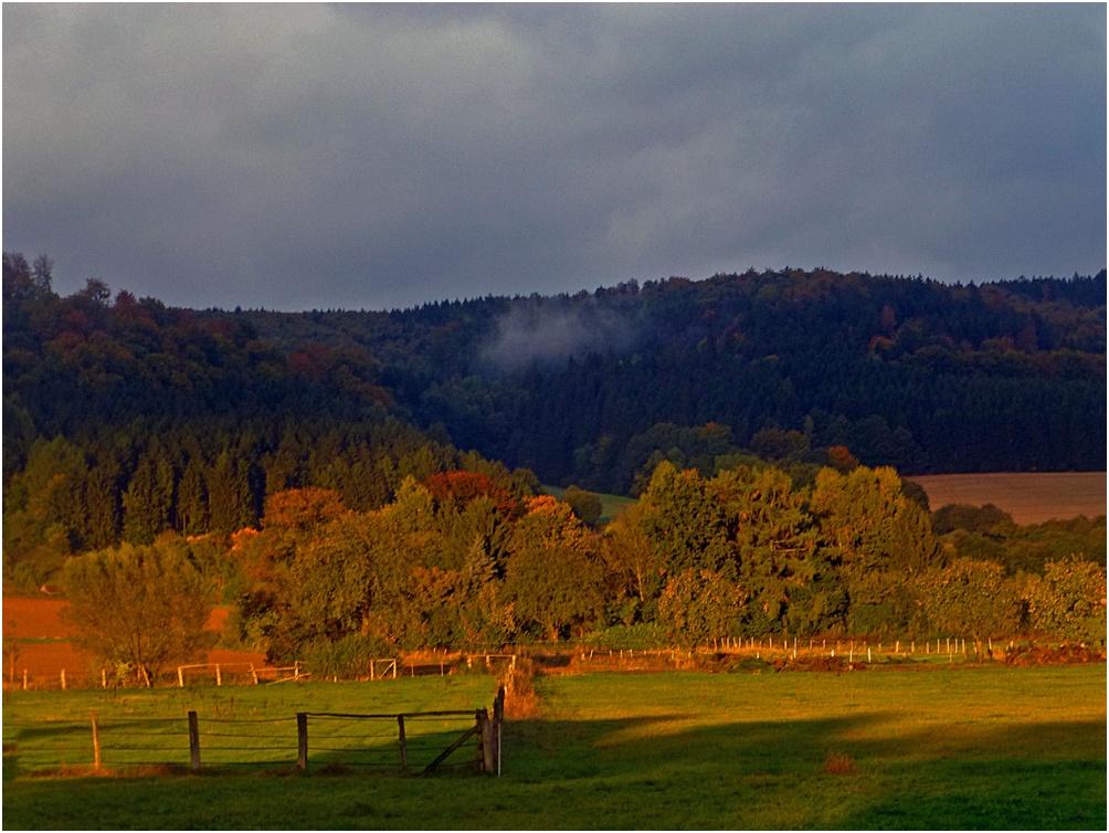 Herbst im Solling