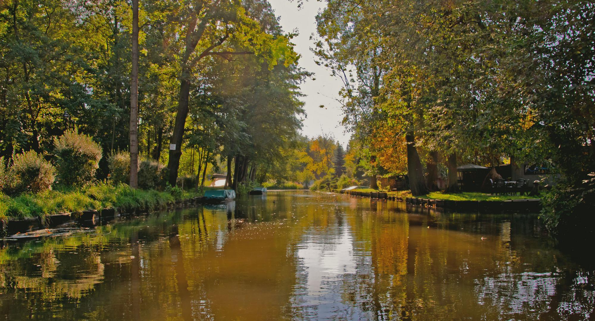 Herbst im Spreewald (1)