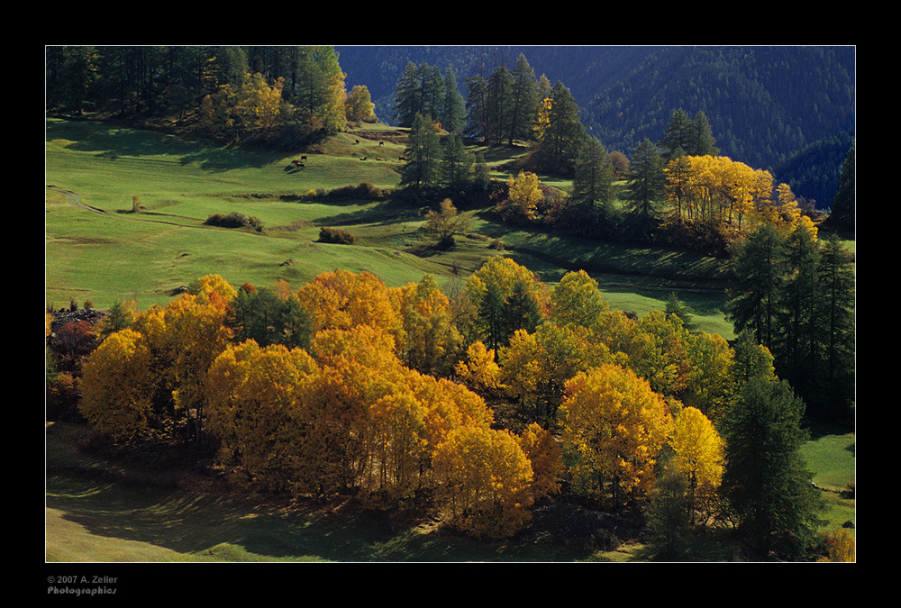 Herbst im Unterengadin
