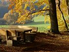 Herbst im Varuswald