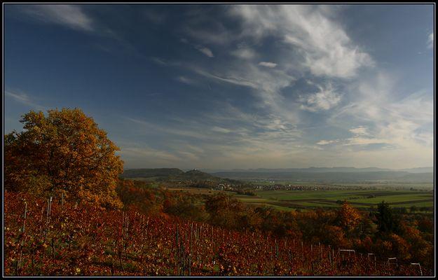 Herbst im Wengert