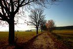 Herbst im Westerzgebirge