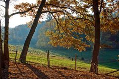 Herbst Impessionen 1