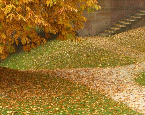 Herbst-Impression II 2015