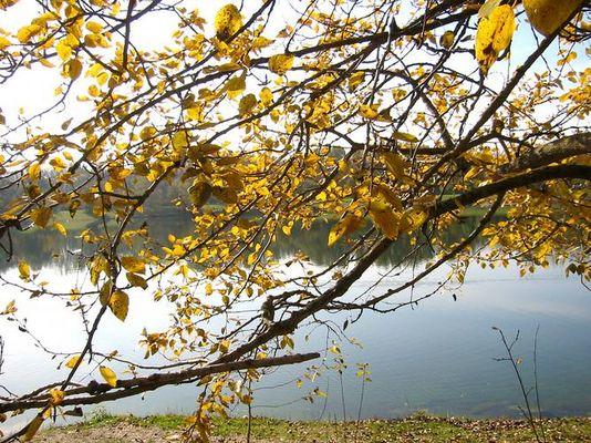 Herbst -impressionen