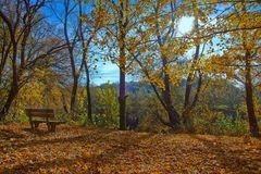 Herbst Impressionen 5
