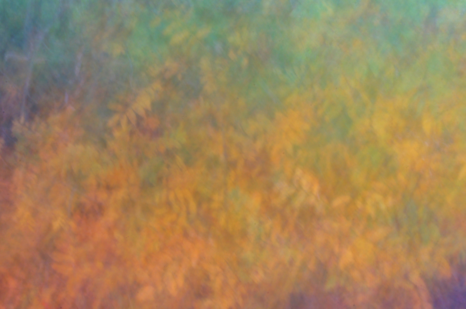 Herbst-Impressionen IX