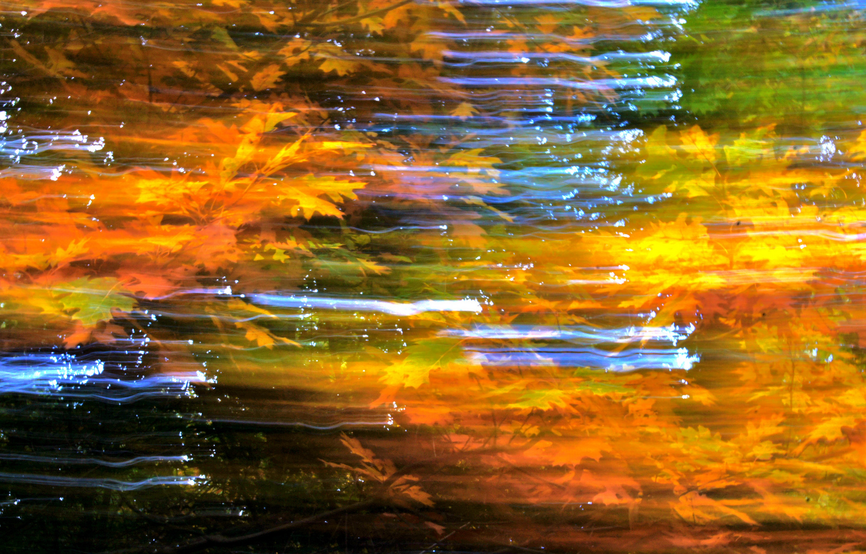 Herbst-Impressionen VI