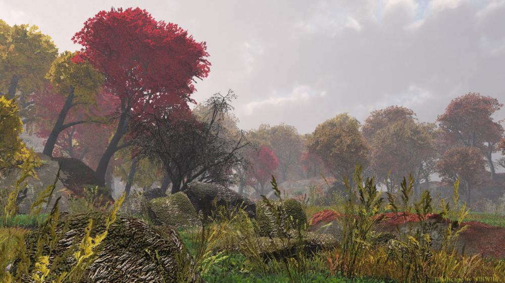 Herbst imTeutoburger Wald