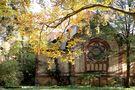 Herbst in Beelitz Heilstätten von Dan Kollmann