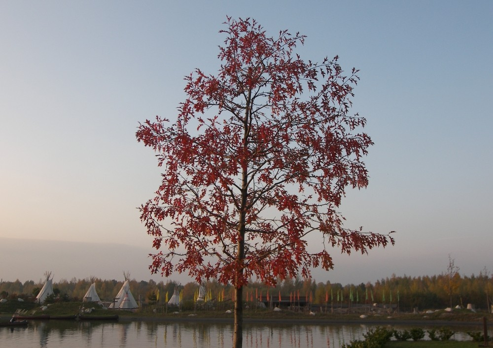 Herbst in Belantis