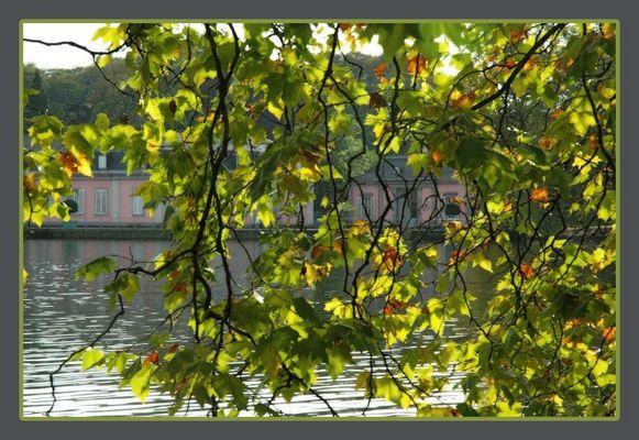 Herbst in Benrath