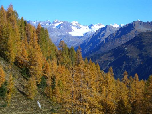 Herbst in Davos