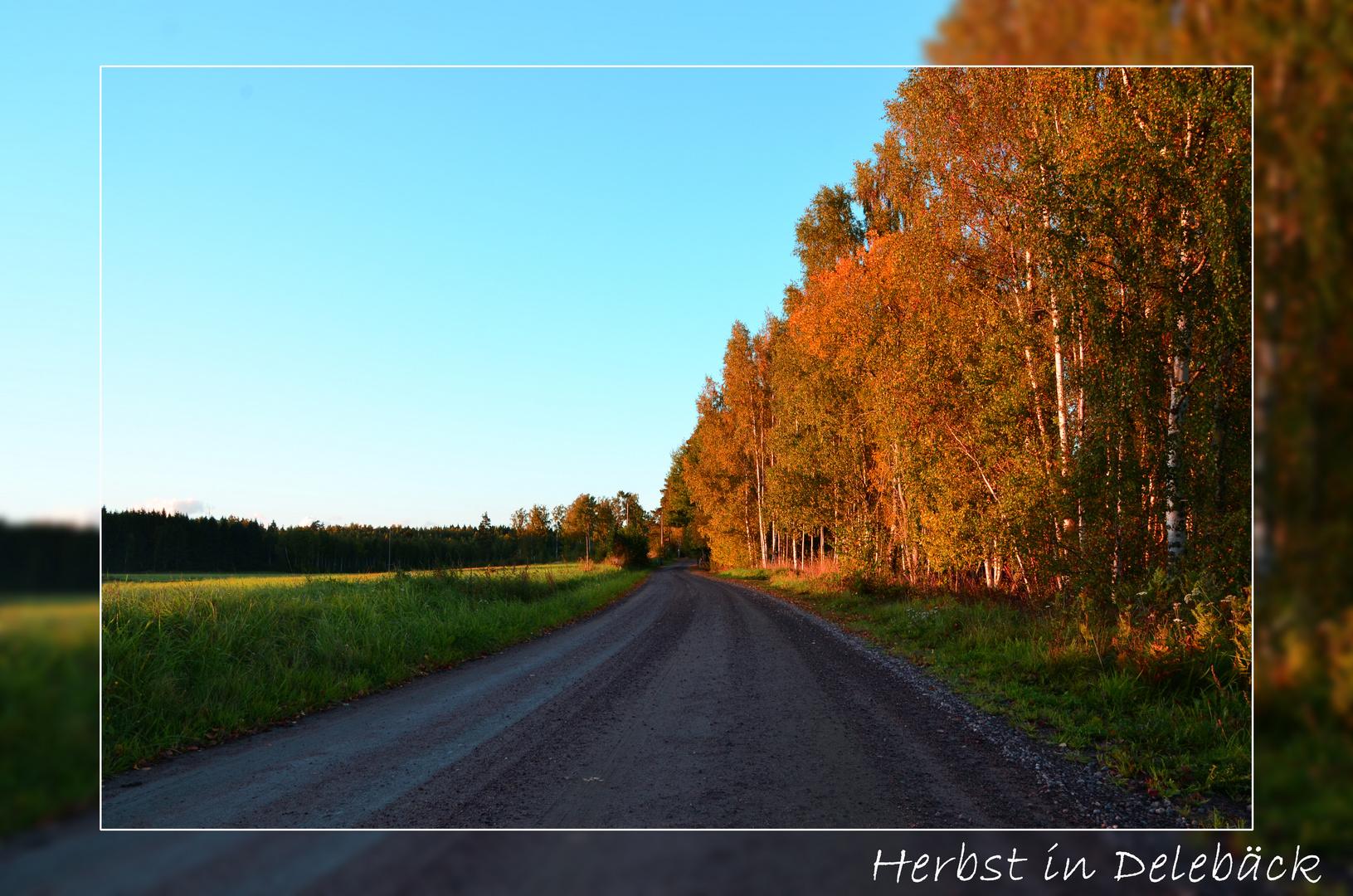 Herbst in Delebäck