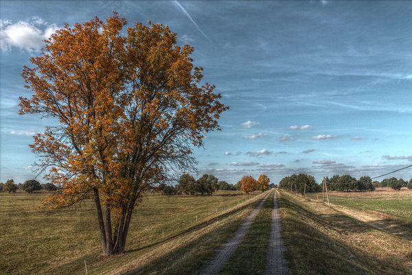 Herbst in den Auen...