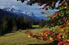 Herbst in den Bayrischen Alpen