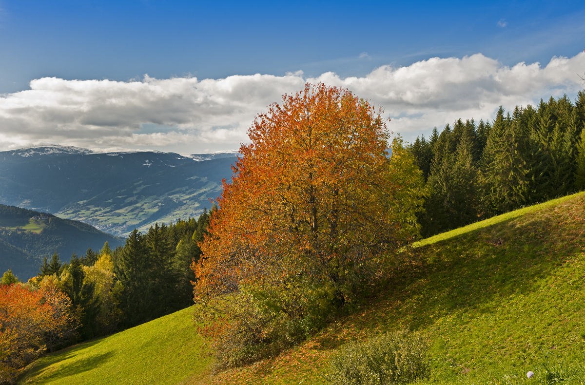 herbst in den bergen foto bild landschaft berge natur bilder auf fotocommunity. Black Bedroom Furniture Sets. Home Design Ideas