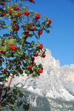 Herbst in den Dolomiten -2-