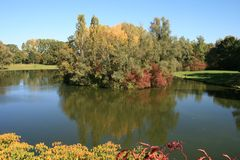 Herbst in den Rheinauen in Bonn