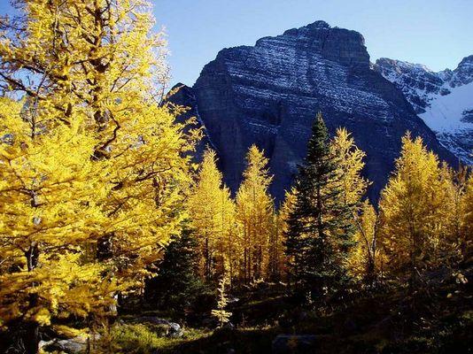 Herbst in den Rocky Mountains
