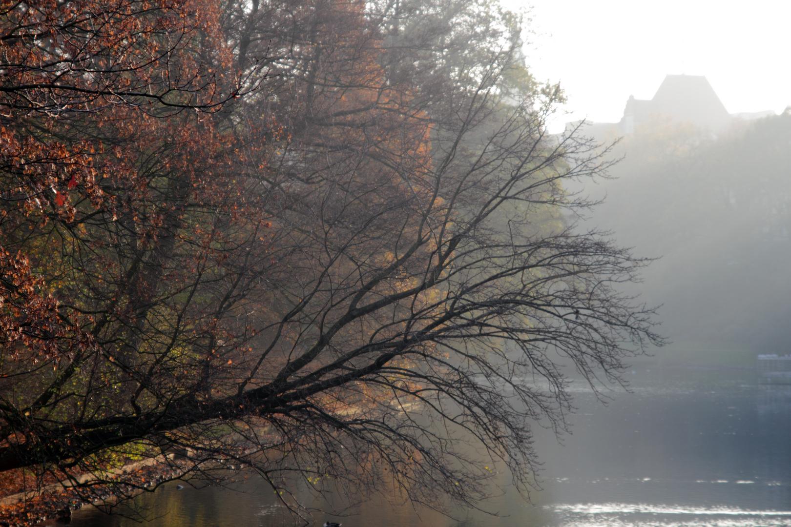 Herbst in den Wallanlagen