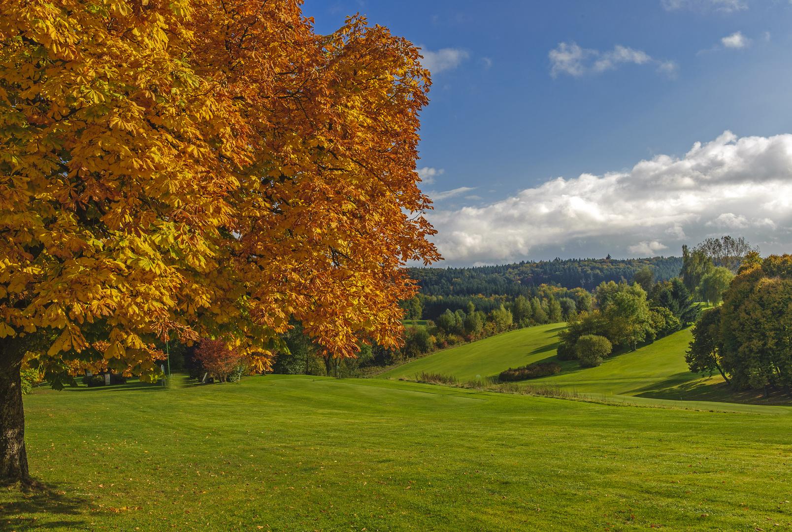 Herbst in den westlichen Wäldern