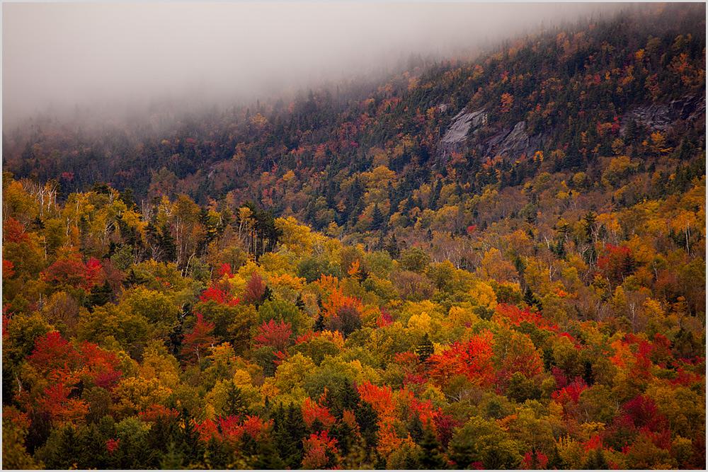Herbst in den White Mountains