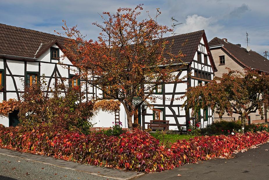 Herbst in der Eifel!