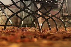 Herbst in der Eschenlaube