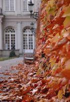 Herbst in der Residenz