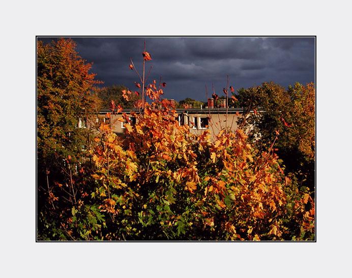 Herbst in der Stadt 4
