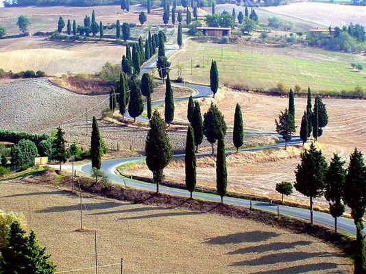 Herbst in der Toscana2