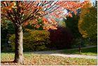 Herbst in Ettlingen 02