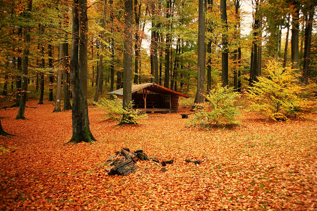 Herbst in Gillenfeld
