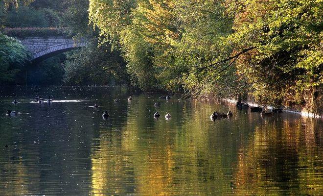 Herbst in Grötzingen 02