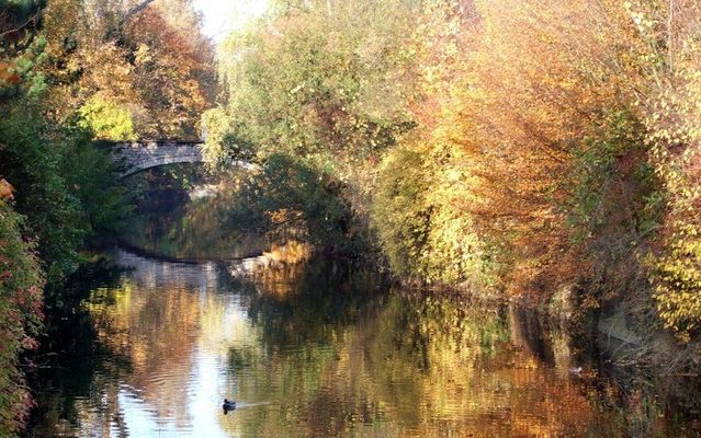 Herbst in Grötzingen 03