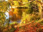 Herbst in Halle (Saale)