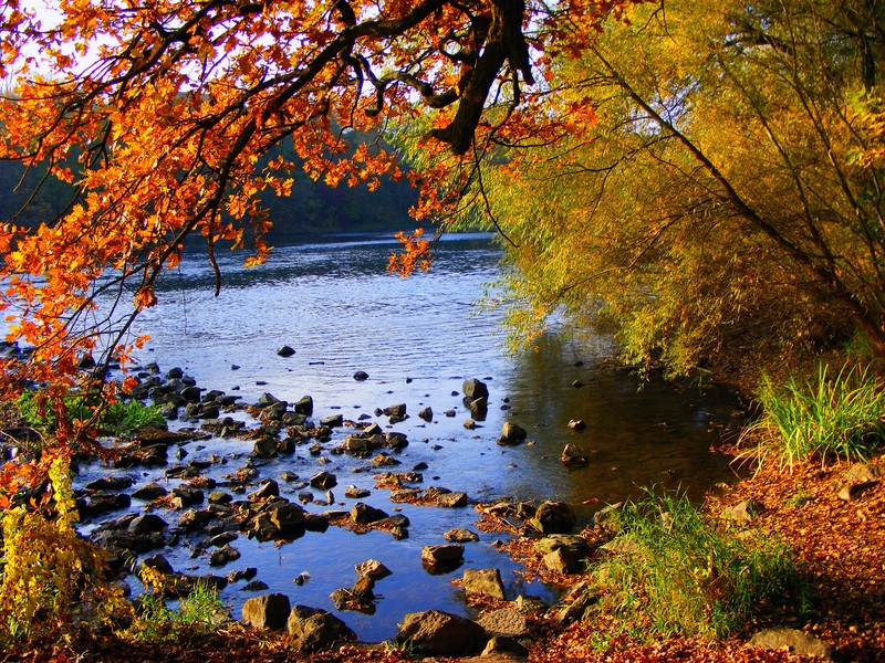 Herbst in Halle Saale 3
