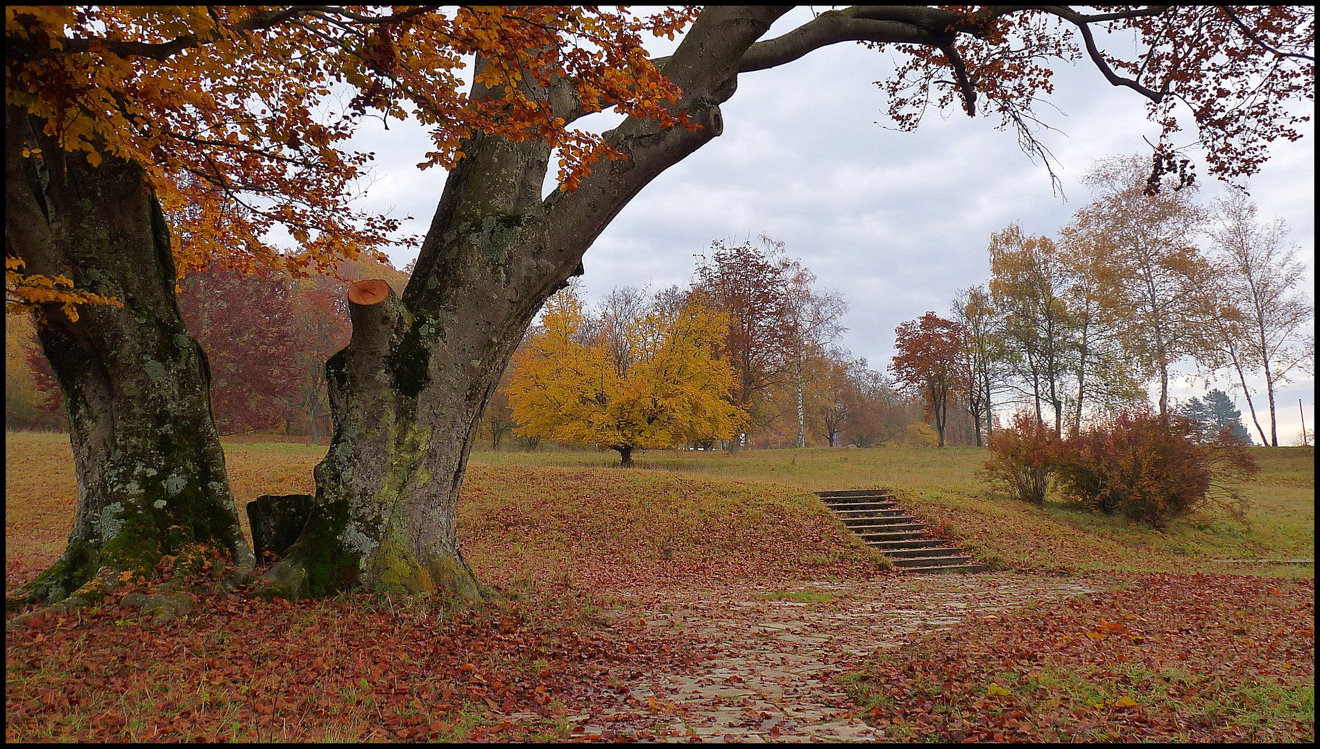 Herbst in Heidenheim